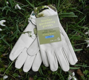 Leather Gloves - for the gardener. Large